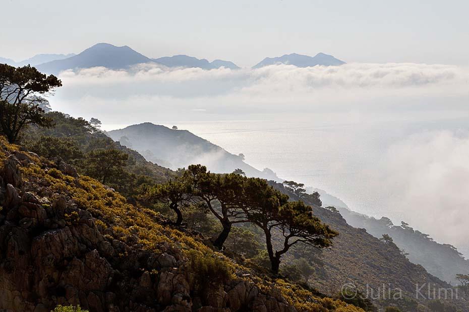 _64DSC9496 La montagna di Vigla la mattina