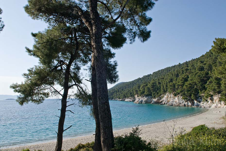 DSC_3743 Skopelos Milia beach