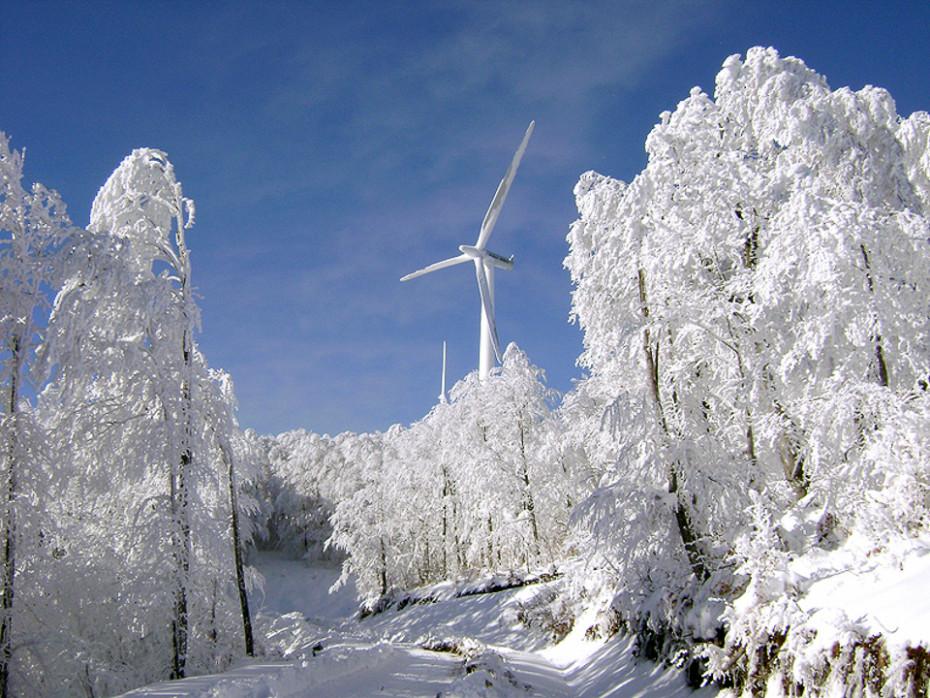 snow-12-2007-036
